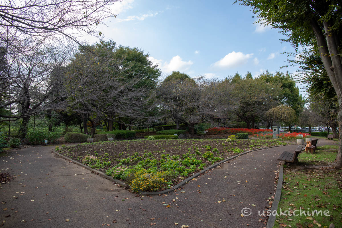 大宮花の丘農林公苑「和風園地」
