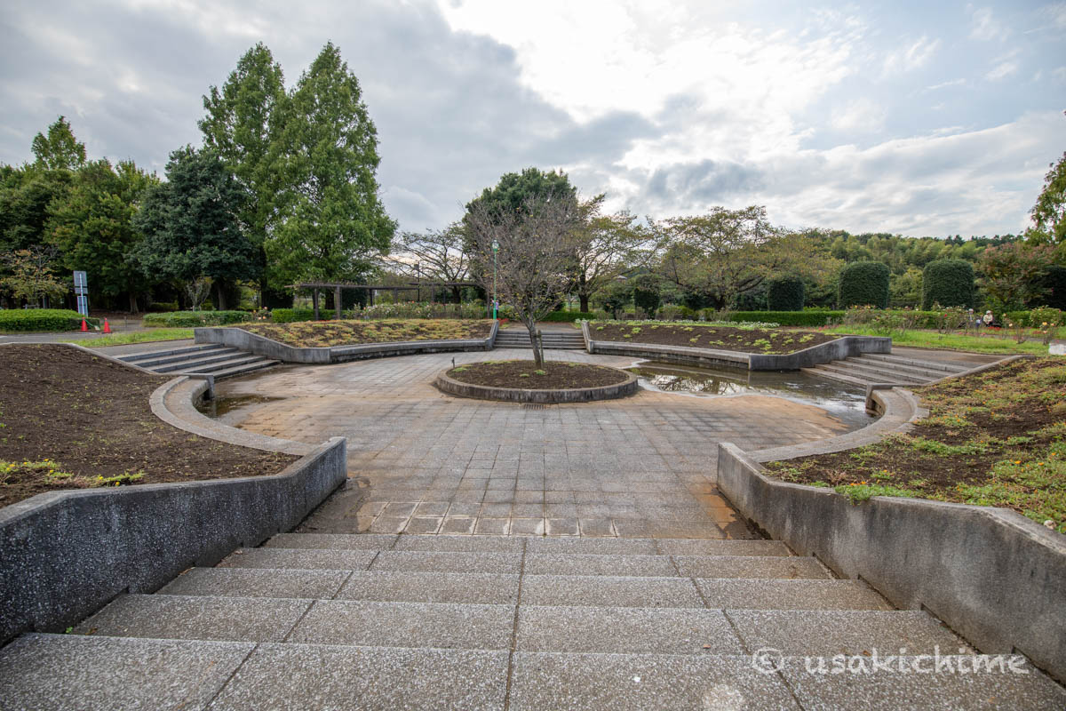 大宮花の丘農林公苑