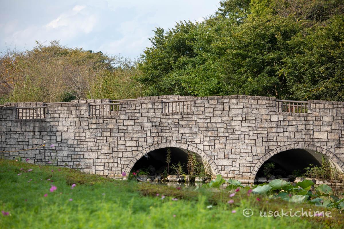 大宮花の丘農林公苑「ビオトープに掛かる橋」