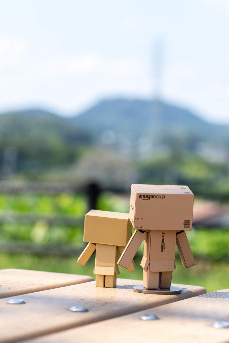 ポートレート撮影の練習 ダンボー@関越自動車道 嵐山PA