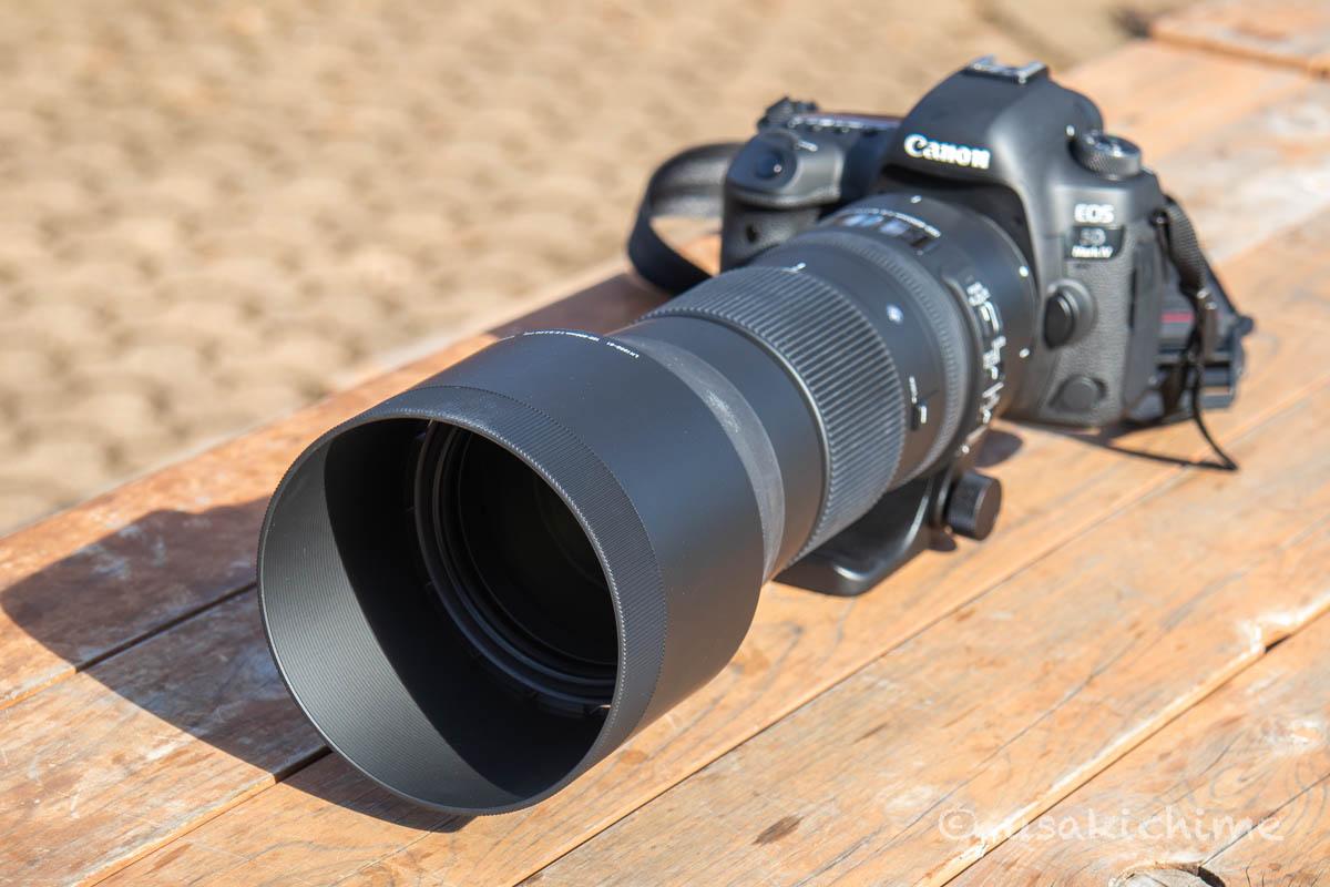【デジタル一眼レフカメラ】CANON EOS 5D Mark IV + SIGMA 150-600mm F5-6.3 DG OS HSM   Contemporary@埼玉県こども動物自然公園
